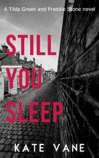 Still You Sleep by Kate Vane