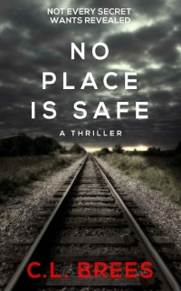No Place is Safe by C.L. Brees
