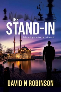 The Stand-In by David N Robinson