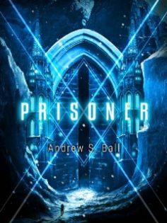 Prisoner by Andrew Ball