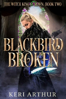 Blackbird Broken by Keri Arthur
