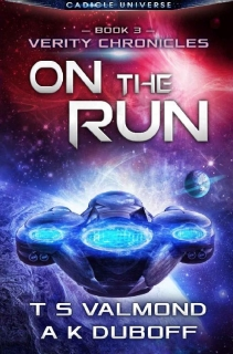 On the Run by T.S. Valmond, A.K. DuBoff