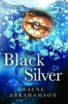 Black Silver by Wayne Abrahamson